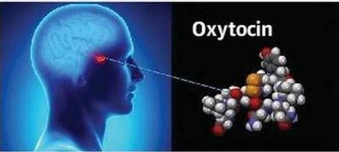 Oxytocin nasenspray Beipackzettel von